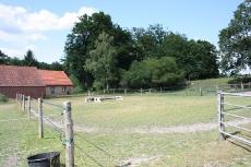 Bilder vom Buchenhof_21